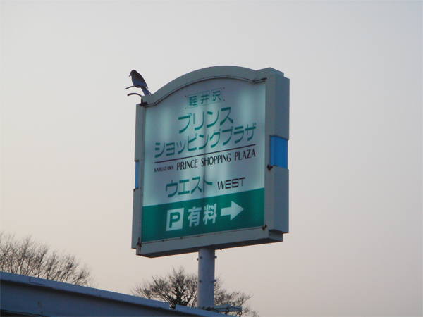 ショッピング~プラザ.jpg